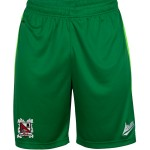 green goalkeeper shorts